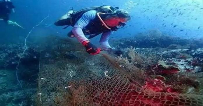 Boat anchoring, fishing banned to protect coral reefs in Thailand